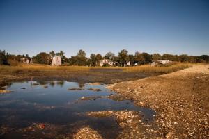 Eel-Pond-Dry