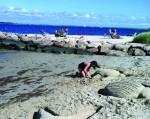 BeachArt_0811