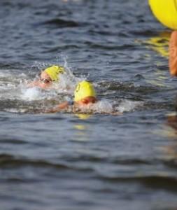 normal_swim-29