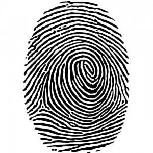 fingerprint-vector_12613